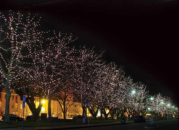 Salamanca tokistar lightstrings